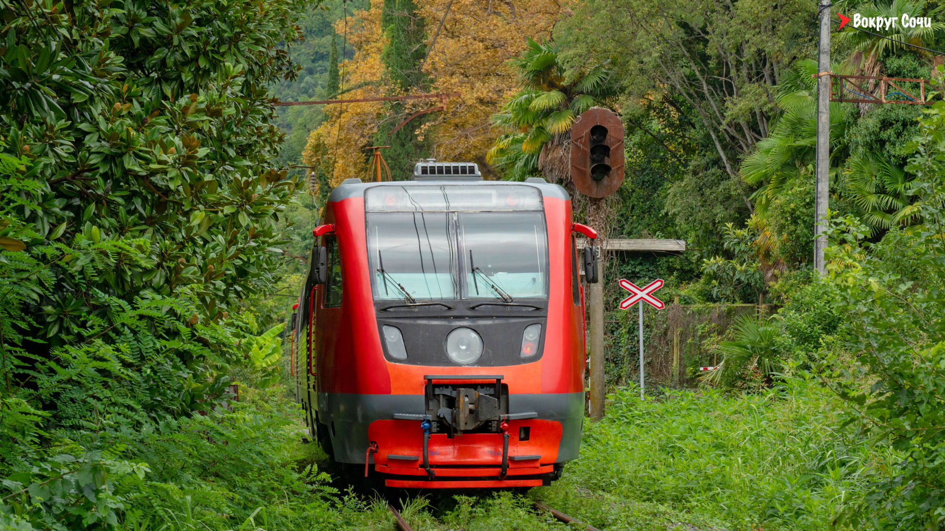 поезд Адлер-Гагра